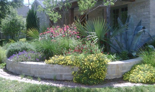 Xeriscaping: What It Is and Why It's Time To Get On Board